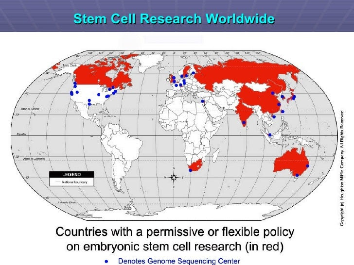 applications of adult stem cells