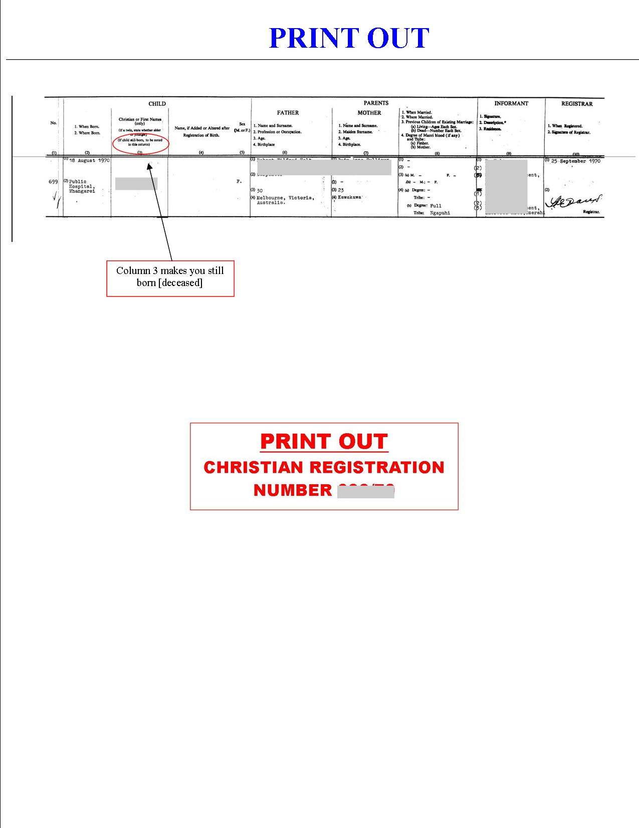 us birth certificate application form